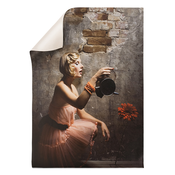Canvas Posters