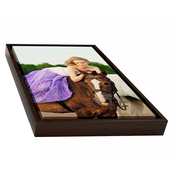 Framed Leather Gallery Wraps